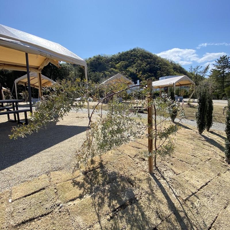 伊木山フォレストキャンプ場-32