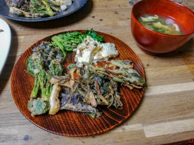 【蕨・タケノコ・山椒・野蒜】野草の下処理方法と美味しい食べ方を教えます