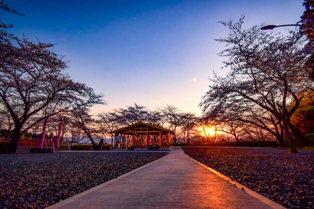 日本一周中の人におすすめしたい全国の思い出に残る無料キャンプ場7選