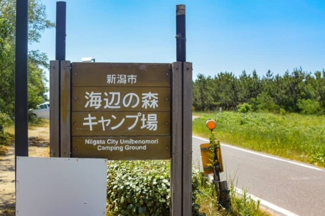 新潟「海辺の森キャンプ場」で夏キャンプ!無料地引網体験は忘れずに!