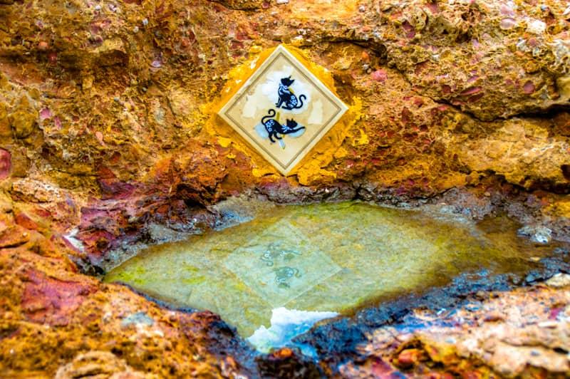 サロウの野良猫用水飲み場