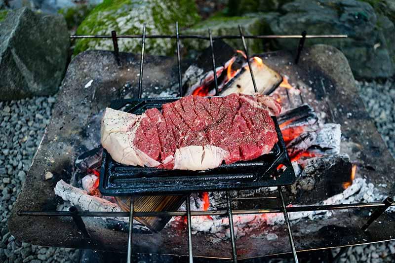 鉄板と焚き火とステーキ