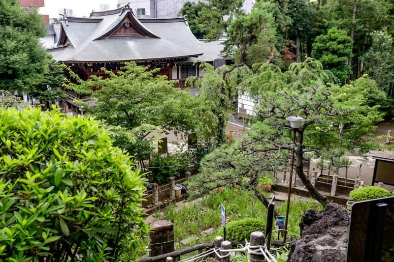 千駄ヶ谷富士の頂上から