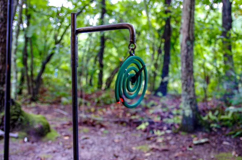 夏のキャンプ場の選び方