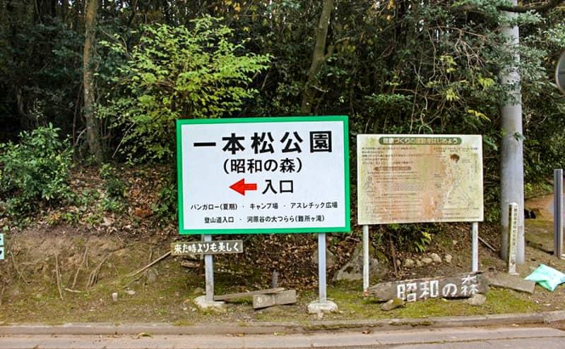 昭和の森10