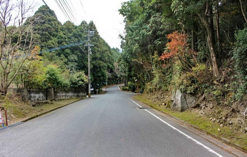 昭和の森11