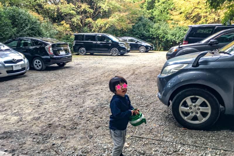 昭和の森13