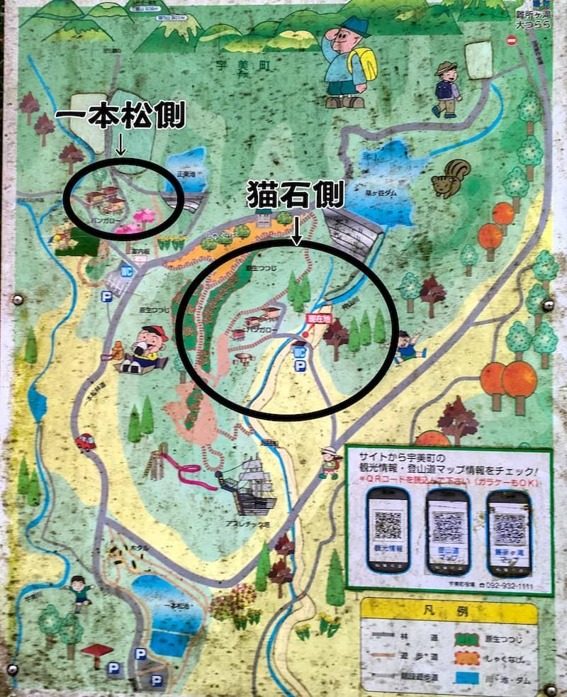 昭和の森16