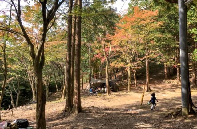 福岡の「昭和の森」は全キャンパー対応型!キャンプ好きなら行くしかない!