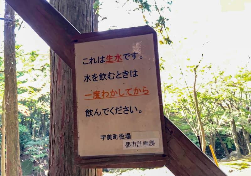 昭和の森20
