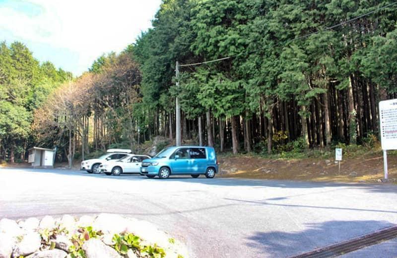 昭和の森7