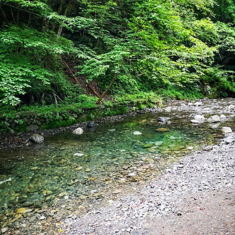 神戸園キャンプ場-15
