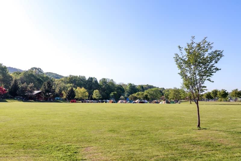 北海道の子連れキャンプは「カムイの杜公園キャンプ場」が断然おすすめ