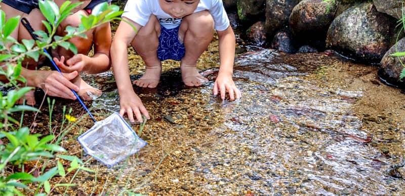 夏の尾高高原キャンプ場で大人も子供も大はしゃぎ!川や芝滑りで遊んだ後は絶景を堪能