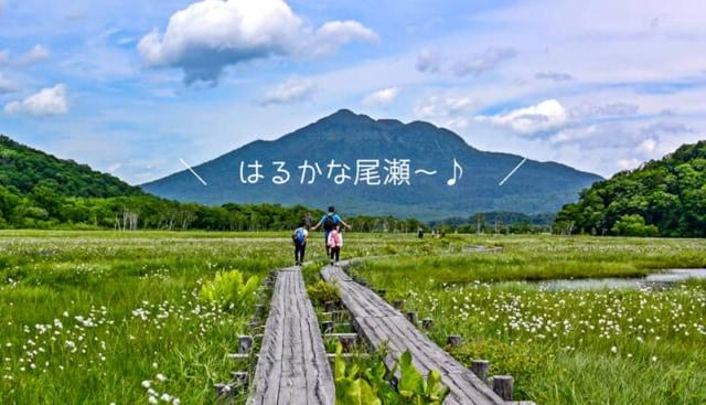尾瀬へ子連れ日帰りハイキング!初心者におすすめの定番コースと注意点