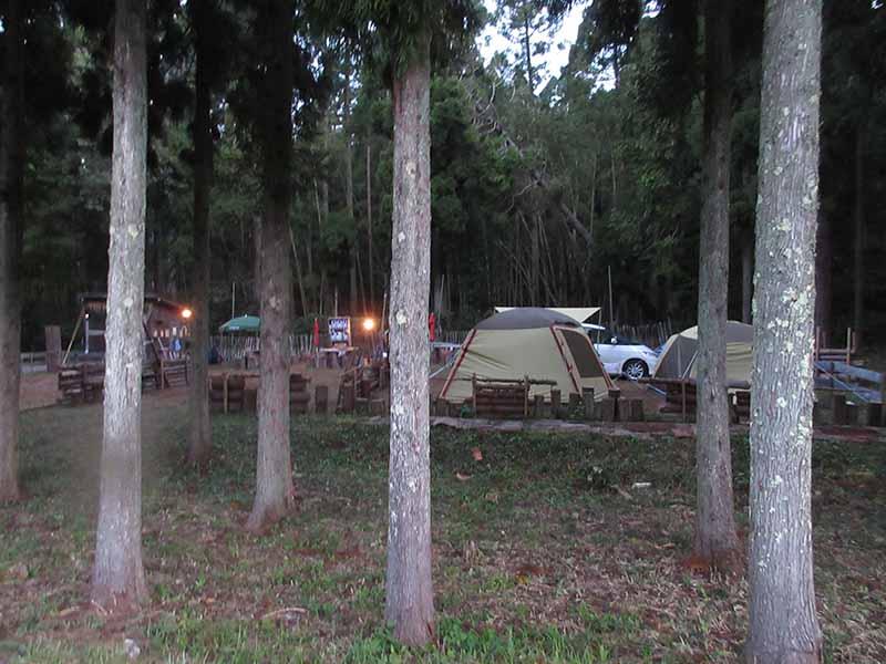 デルフリキャンプの区画サイト