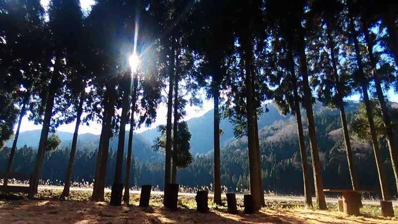 里山キャンプ場