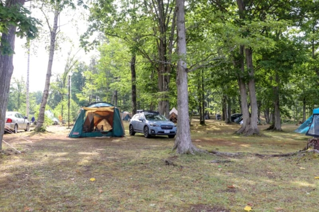 北海道「岩尾内湖白樺キャンプ場」は無料の穴場キャンプ場でした