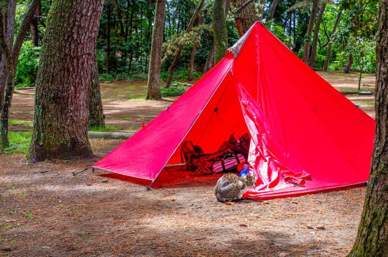 実録!本当にあったキャンプ場の事件簿~キャンプのマナーとルールについて~
