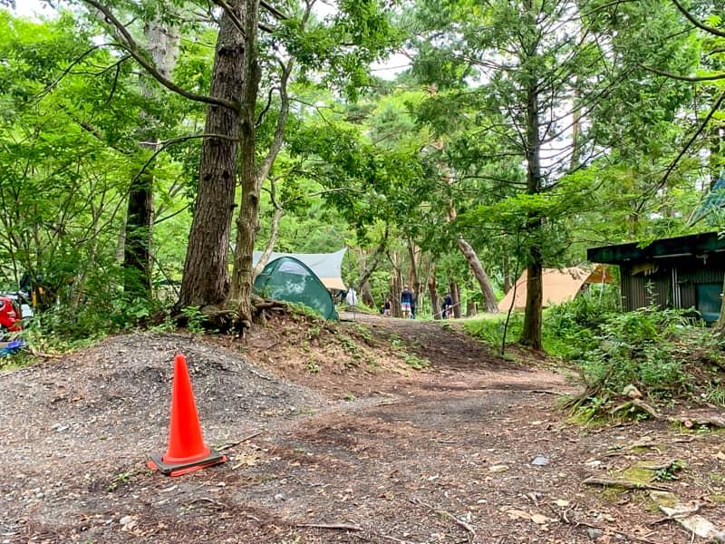 林間が気持ちよく利便性の高いテントサイト