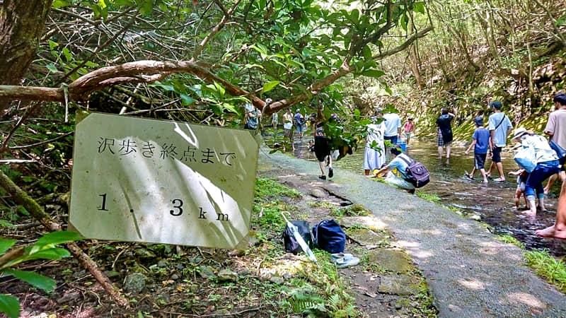 滝まで1.3km