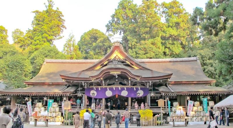 miwayama100