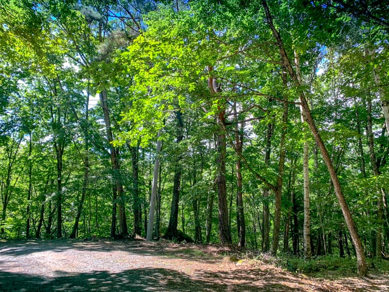 国立公園内にある静かで自然豊かなフォールド