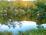 駒出池キャンプ場は自然を愉しむおとなのキャンプ場です