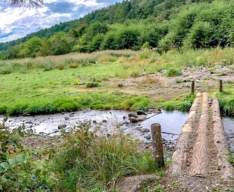 立場川キャンプ場に流れる川