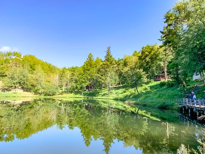 鏡面の釣池での釣りが熱い