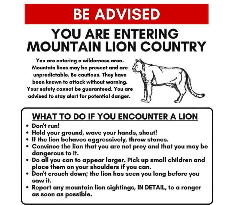 Wild-Animal-Warning_Pic_Mountain_Lion_warning2