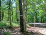 標高1467mの楽園「みずがき山森の農園キャンプ場」は夏でも涼しい林間サイトが魅力
