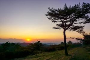 車で行ける登山キャンプ!岩手県の望洋平キャンプ場は圧倒的眺望が手軽に楽しめます