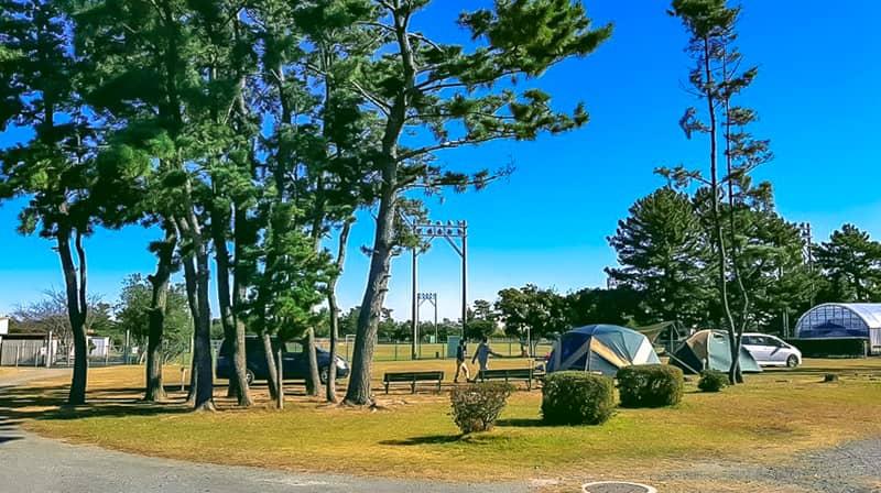 nagisaenl-camp-field-18