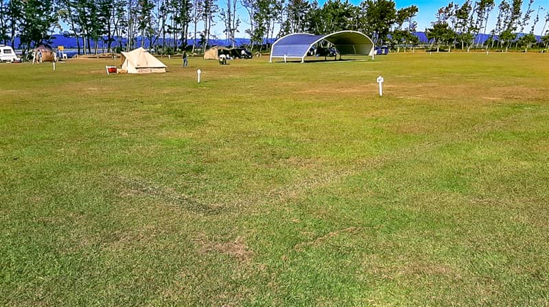nagisaenl-camp-field-19