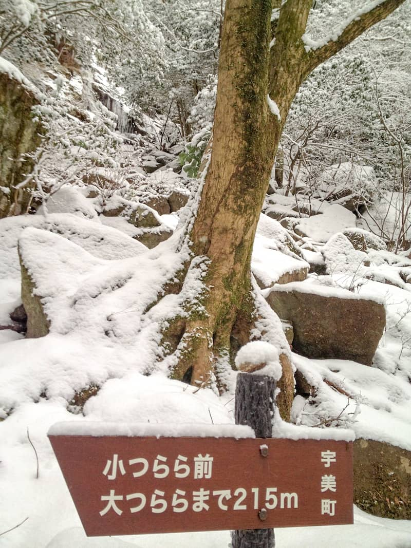 難所ケ滝_201201_18