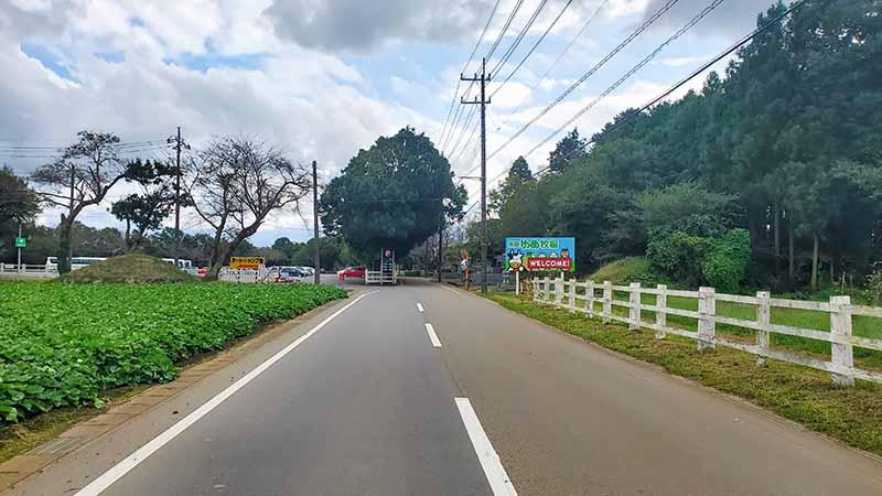 成田ゆめ牧場に向かう道