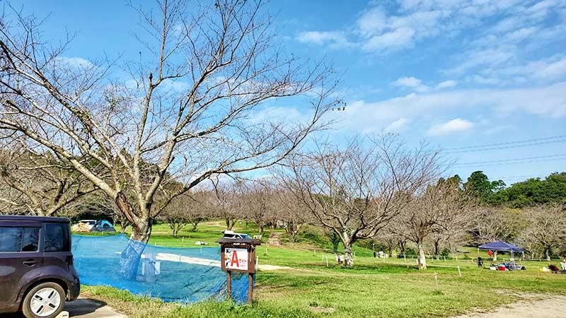 成田ゆめ牧場キャンプ場のAサイト