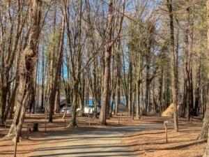 山中湖にあるキャンプ場「レイクロッジヤマナカ」が通年営業になったので行ってきました