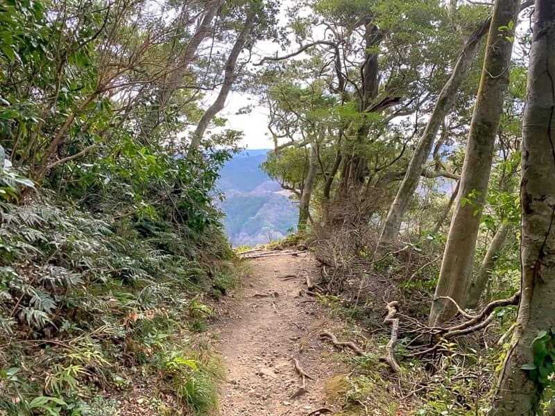「富山(とみさん)」へ登ってみた