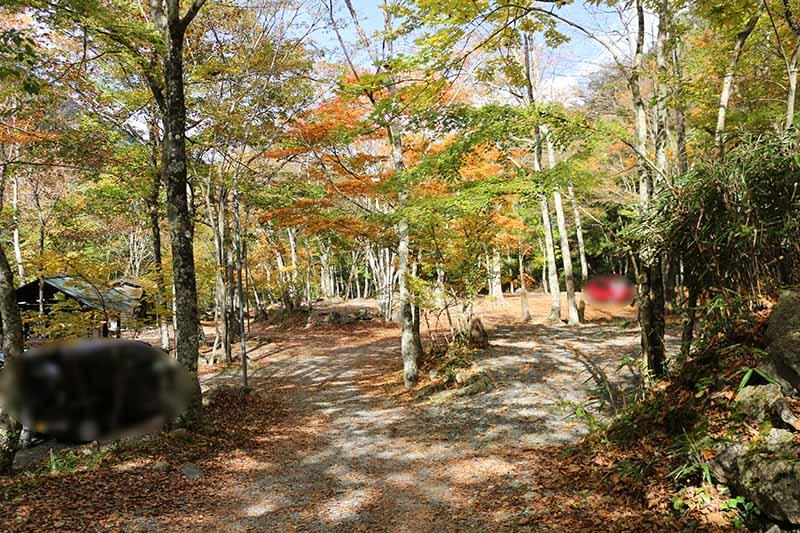 プライベート感がある紅葉が綺麗な山伏オートキャンプ場