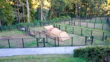リニューアルしたリバーパーク犬飼をレビュー!犬連れキャンプにはドッグランサイトがおすすめ