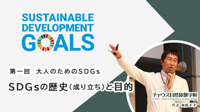 【大人のためのSDGs】第一回 SDGsの歴史(成り立ち)と目的