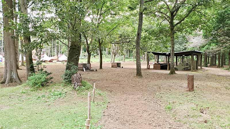 林間フリーサイト
