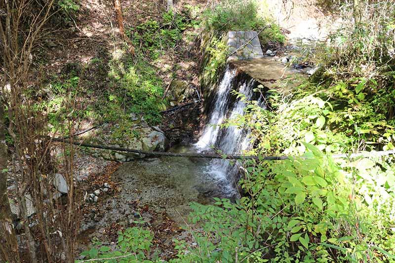 01番サイトの横にある滝