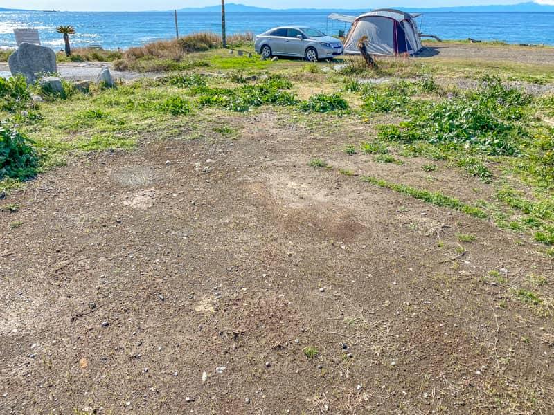 お台場海浜庭園キャンプ場の地面の様子