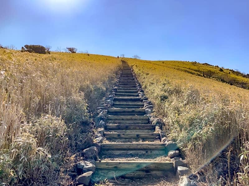 一番初めに登った階段よりも急