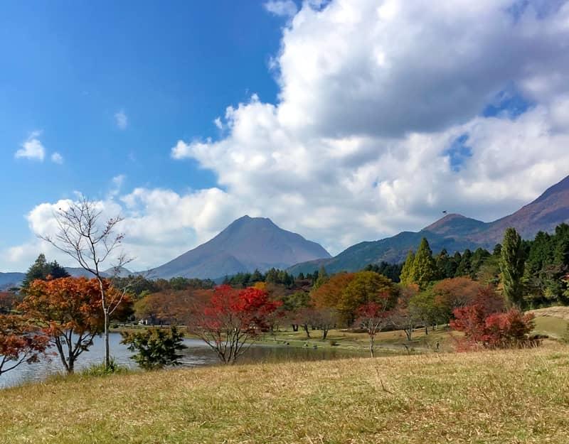 丘の上から見た紅葉した木々と湖、遠くの山