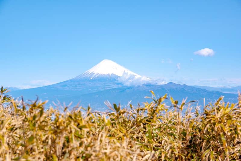 富士山もばっちり綺麗に見えます