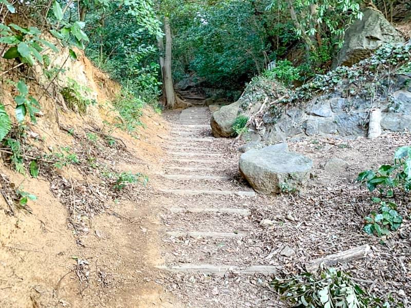 白雲橋コースから登ってみた